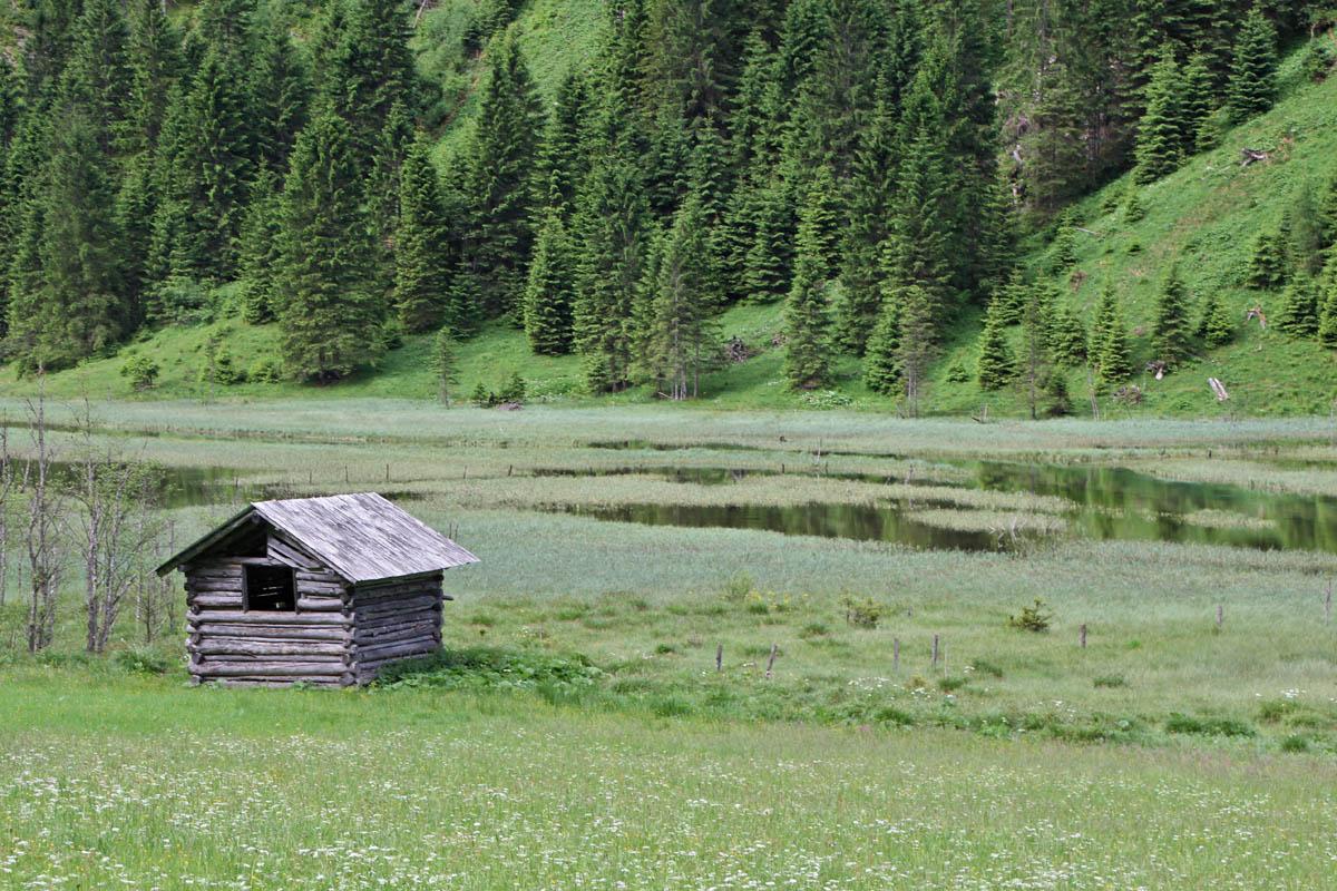 Die eindrucksvollen Sumpfwiesen und schönen Auen ...
