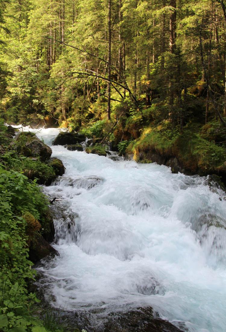 Faszinierend ist das Wasser des Gebirgsbaches vor allem im frühen Sommer.
