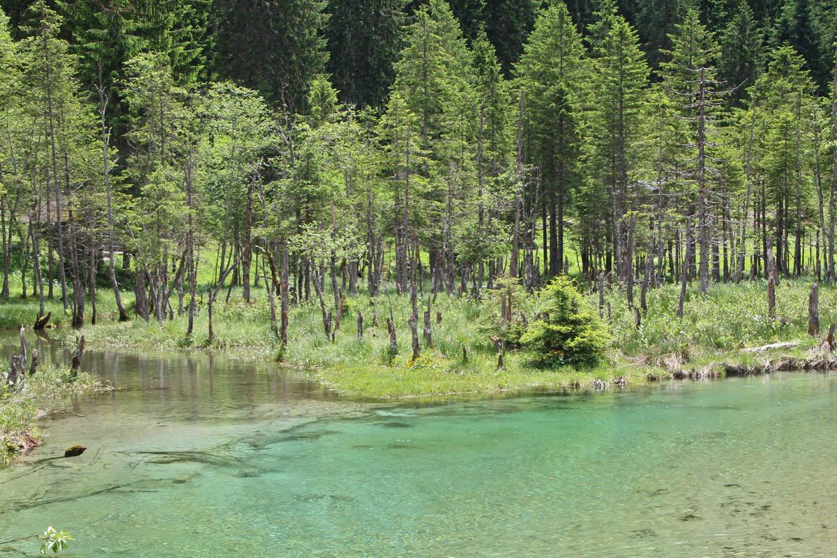 ... zeigen, dass es auch hier einmal einen See gab.