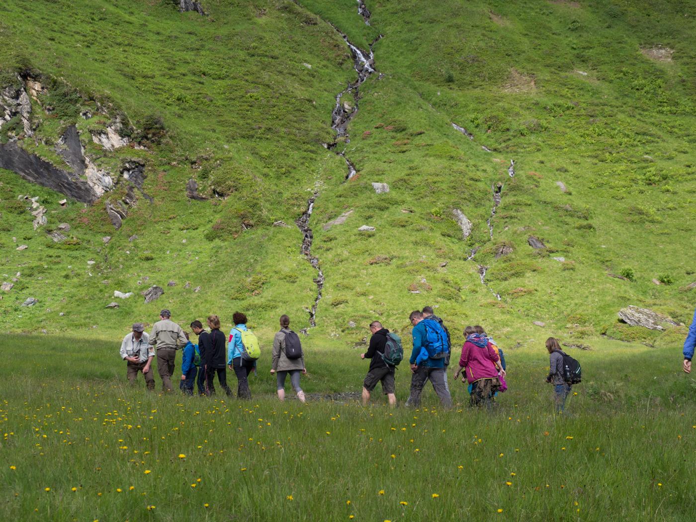 Wandern in der Tundra-Zone.
