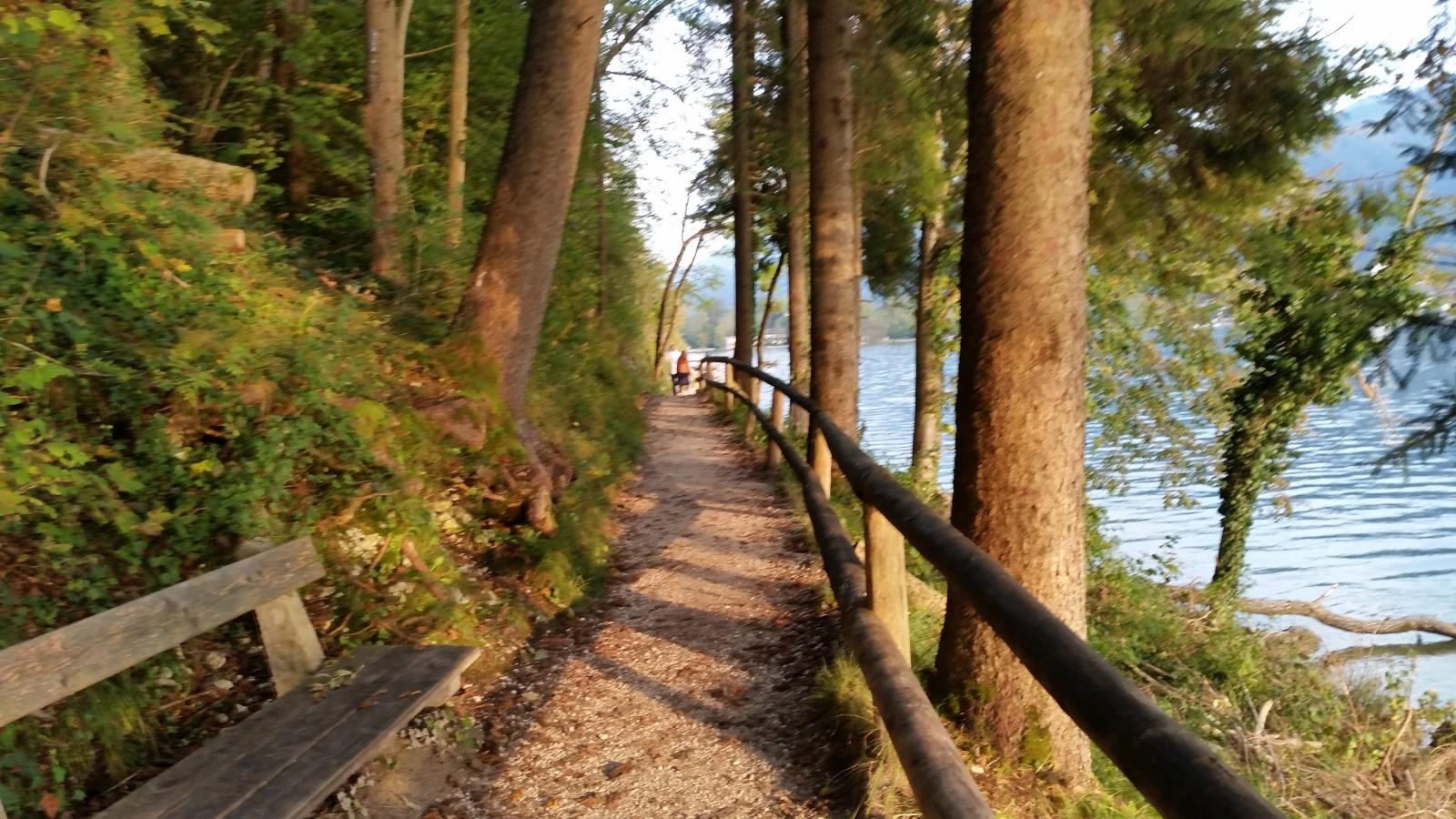 Weg direkt am Wasser des Wolfgangsee