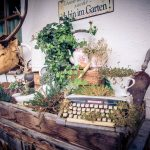 Garten mit unzähligen Details.