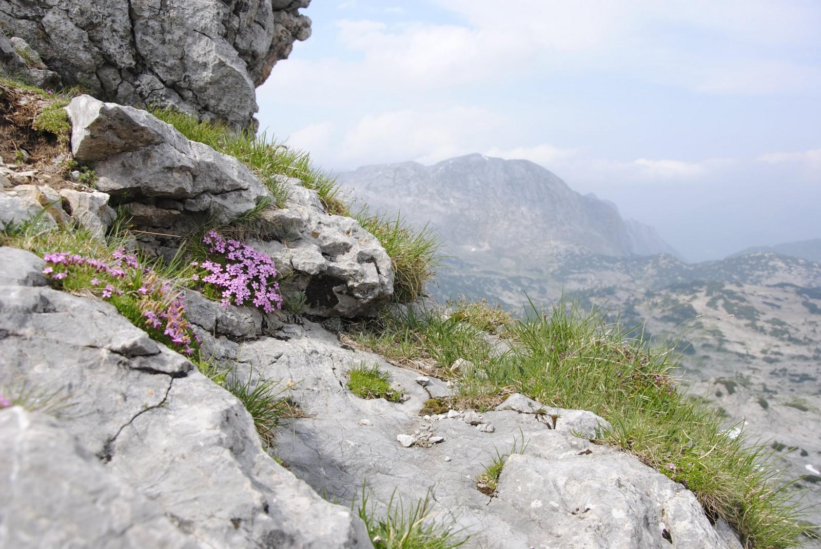 Hoch oben auf den Steinbergen