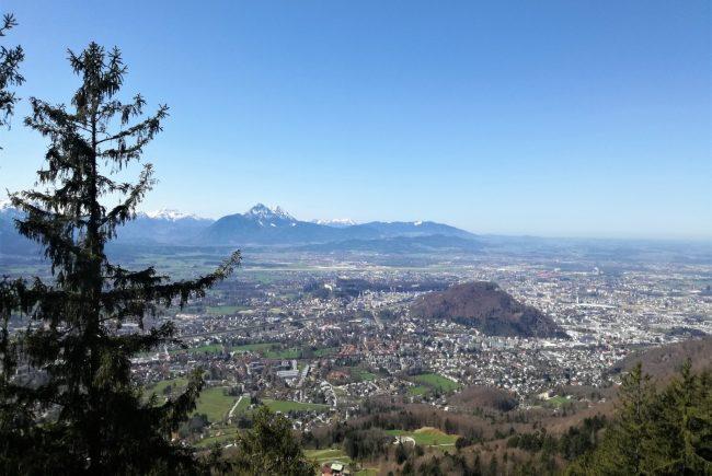 Gaisberg_Blick vom Rundwanderweg