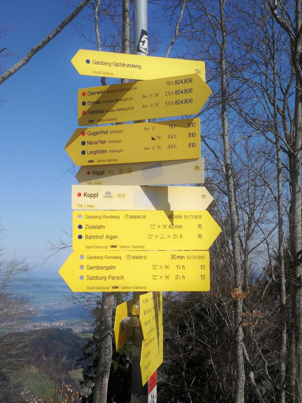 Viele Wege führen auf den Gaisberg