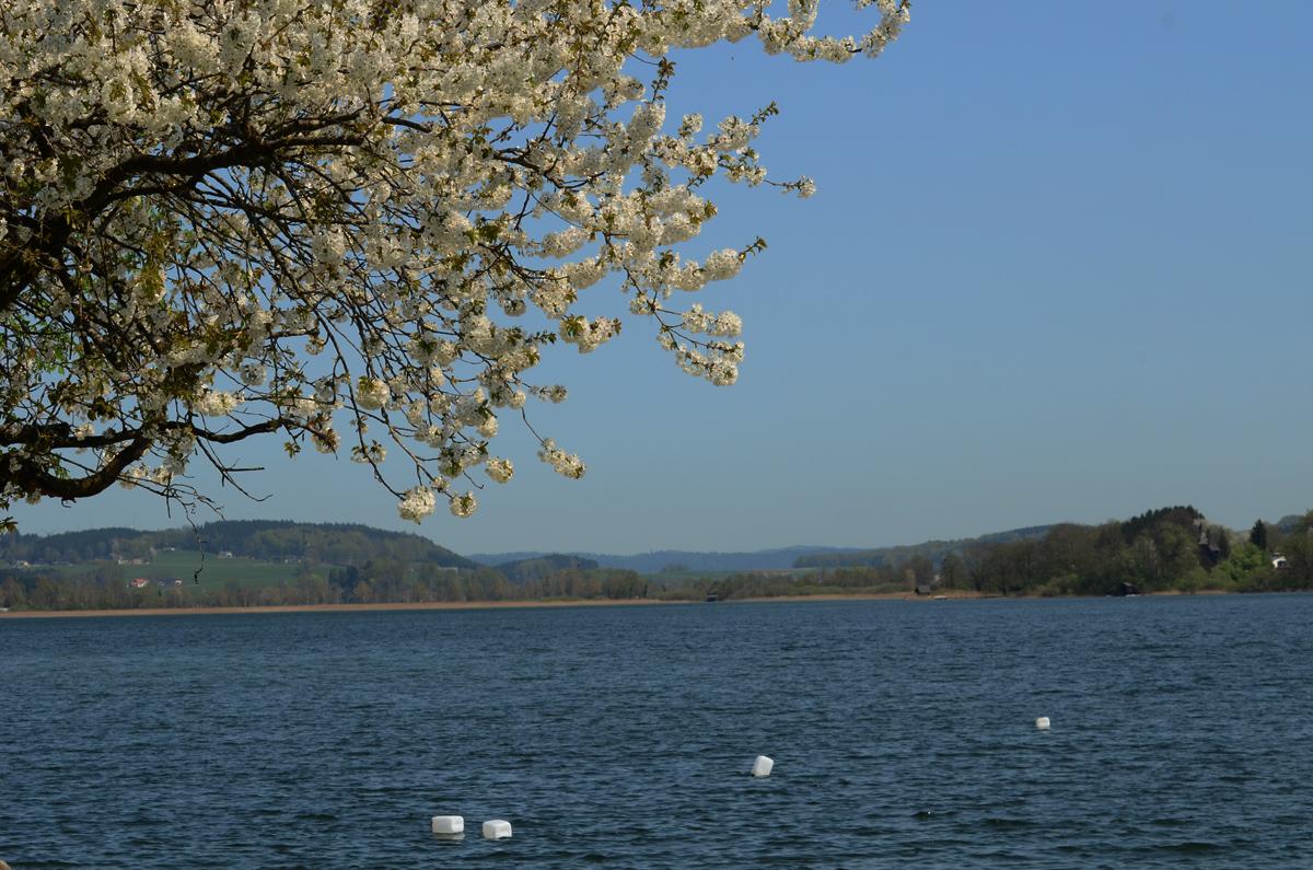 .... und Obertrumer See