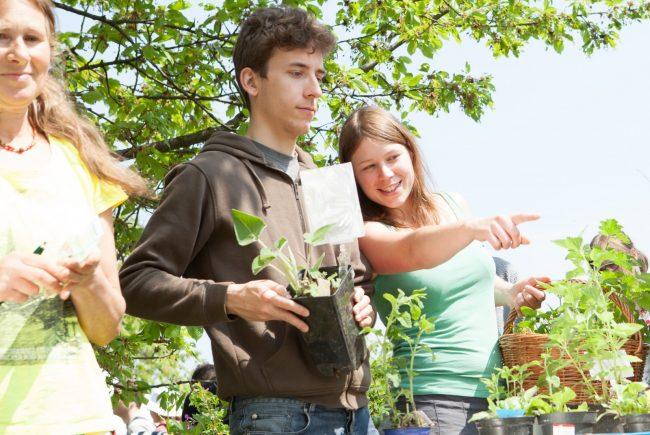 © ARCHE NOAH – Pflanzenexperten sorgen für den Durchblick bei so vielen Pflanzensorten