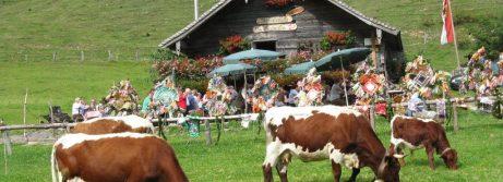Die Mayerlehenhütte in Faistenau Hintersee