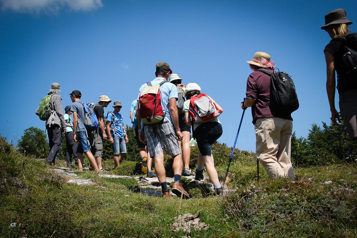 Über Stock und Stein geht es schon, dennoch handelt es sich beim Almblumenweg um eine leichte Wanderung für Jung und Alt