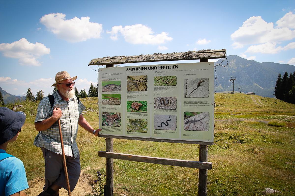 Auch der Fauna auf der Alm ist eine Informationstafel gewidmet