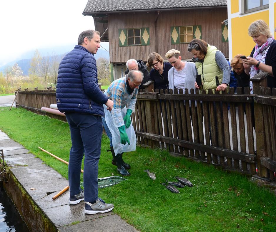 Siegfried Schatteiner fängt Saiblinge und Forellen im Bluntautal bei Golling