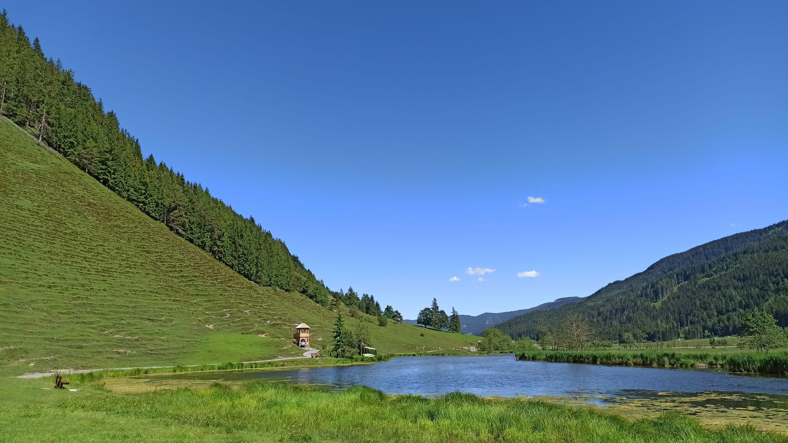 Das ruhige Idyll: Neben dem See der steile Hang