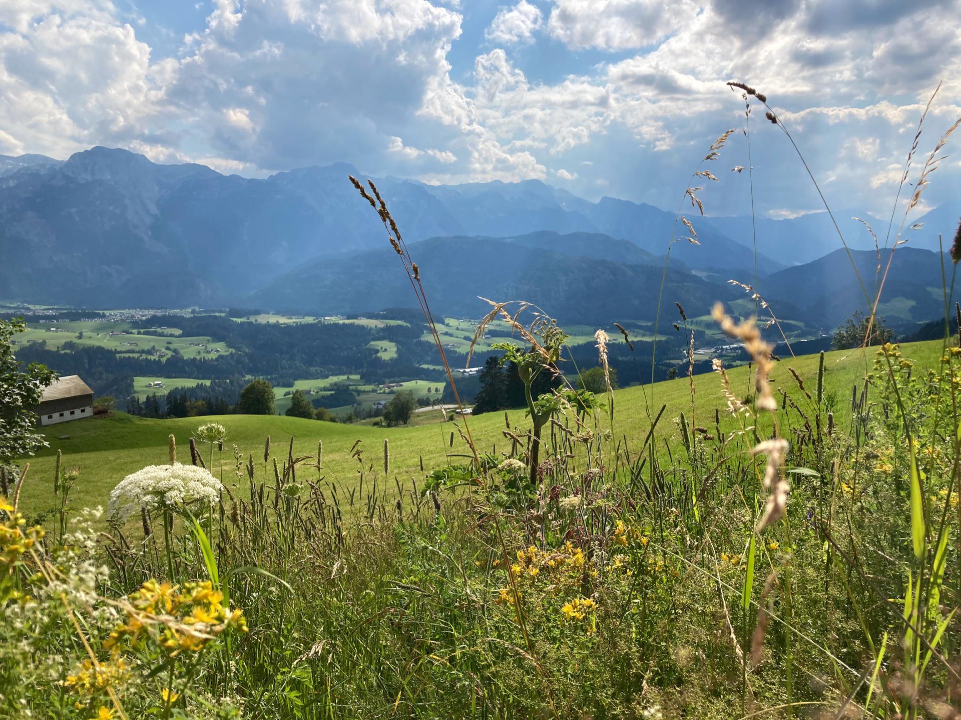 © Fröschl, Blick ins Lammertal