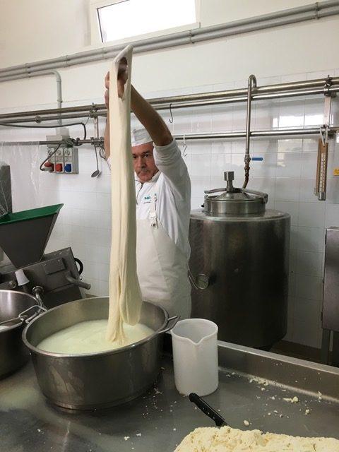 Gastrosophie-Exkursion in Apulien, Mozarella-Herstellung © SMC