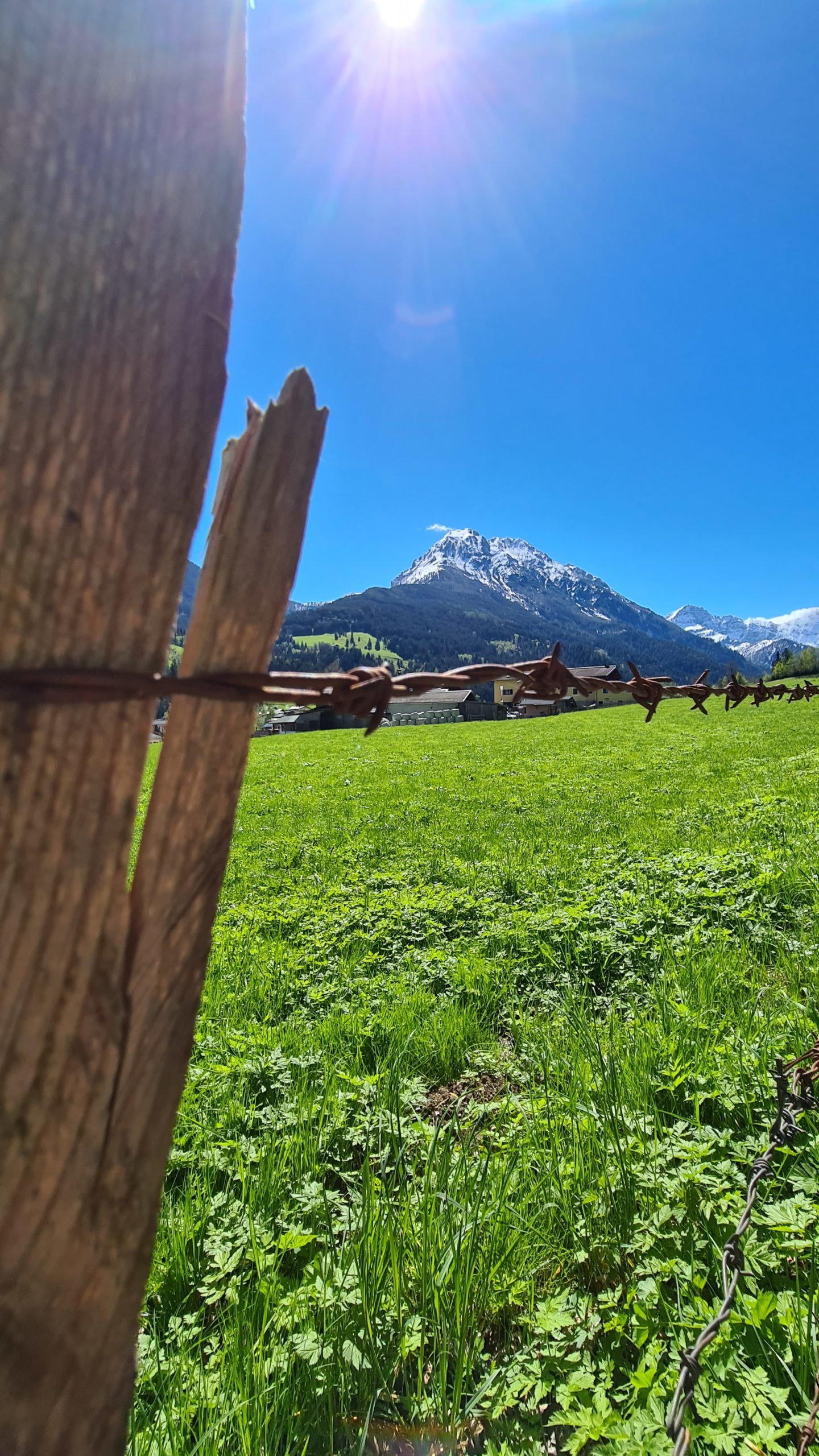 Berg mit Stacheldraht in Wagrain-Kleinarl © Belina Huttegger