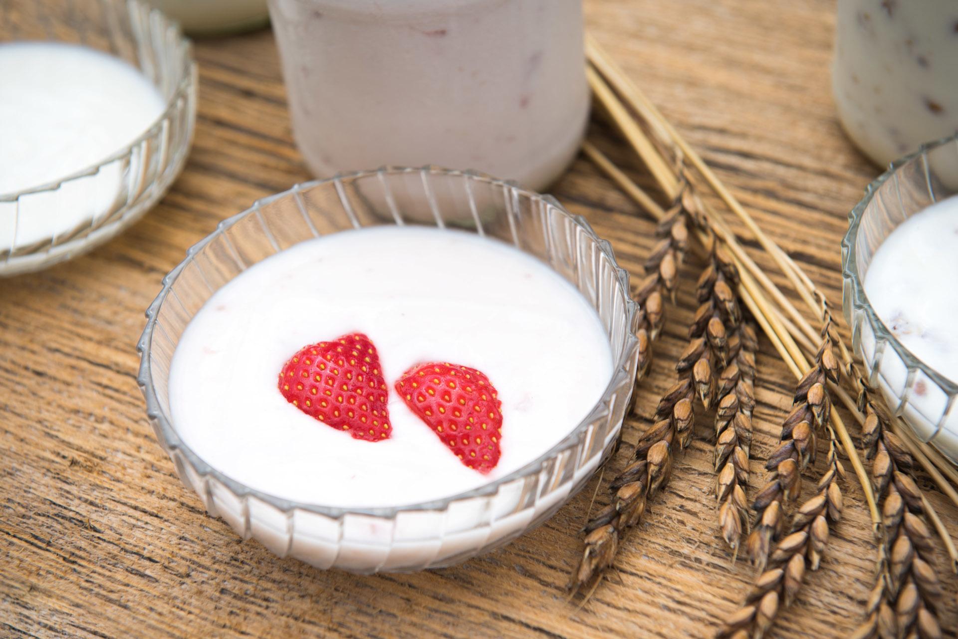 Frisches Joghurt