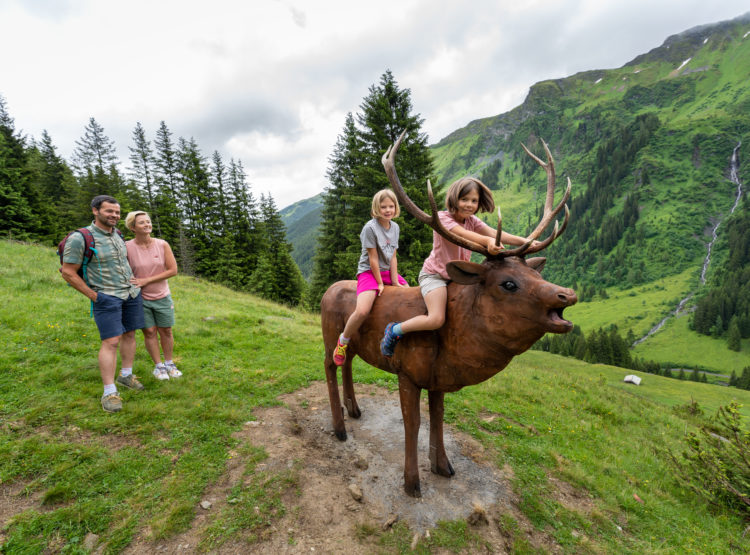 Wildlife Trail Saalbach